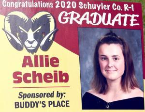 Allie Scheib